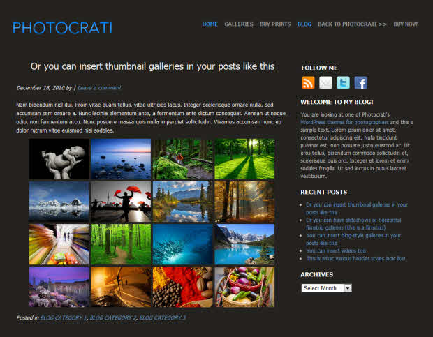 Photocrati Theme